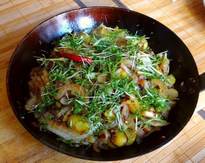 Fenchel,Kartoffeln,Zwiebeln (9)