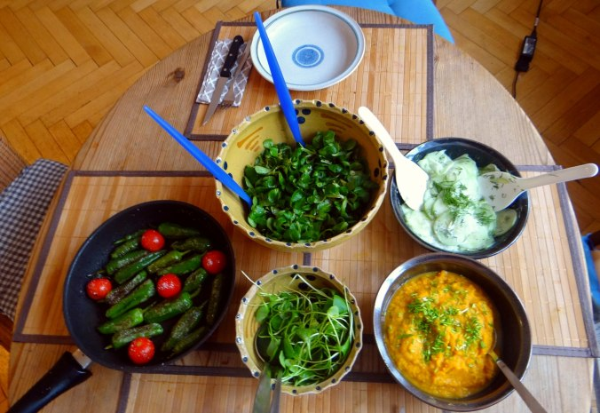 Kürbispüree,Tofu,Salate (3)