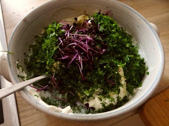 Quark,Kartoffeln,Salat (6)