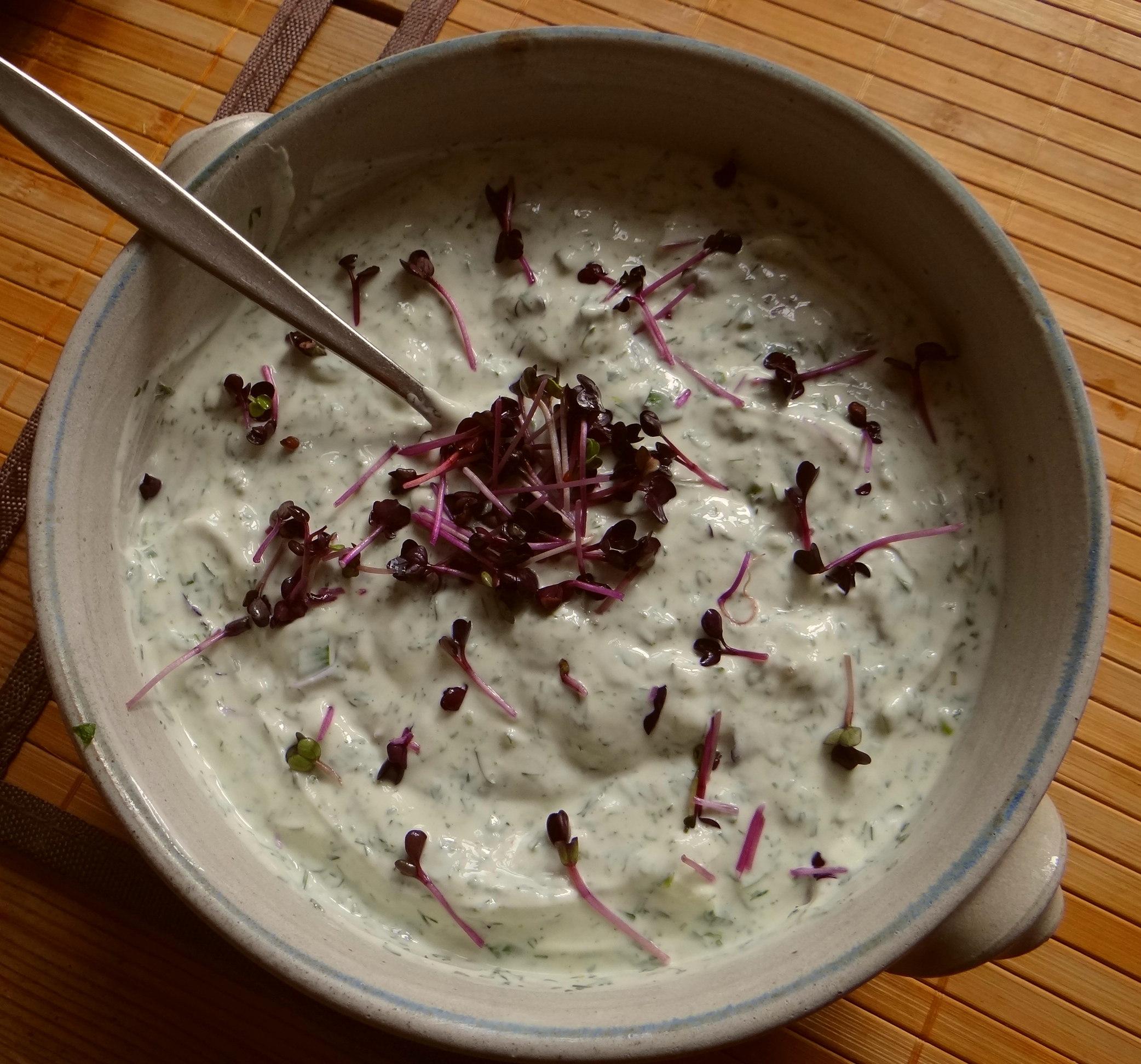 Quark,Kartoffeln,Salat (7)
