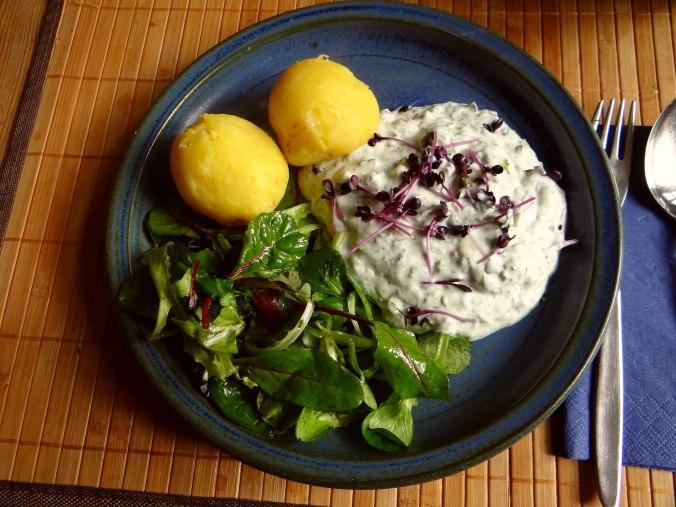 Quark,Kartoffeln,Salat (8)