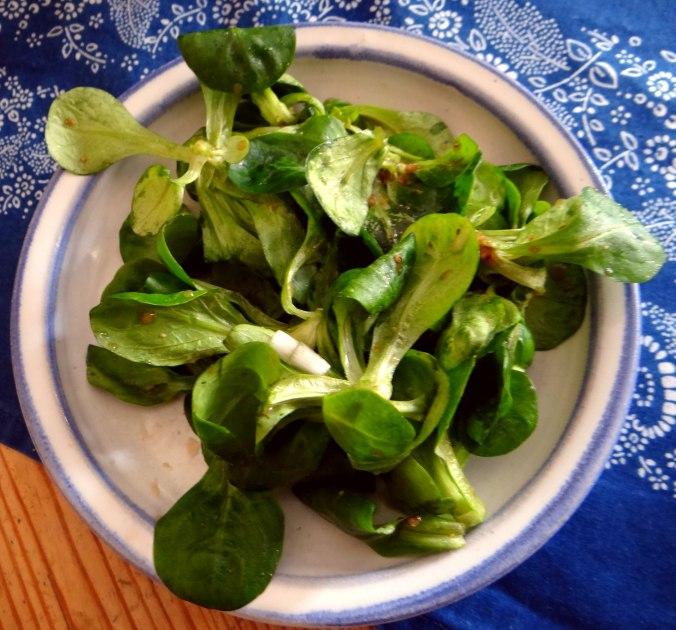 Bouillionkartoffeln, Feldsalat, Zwiebelringe, Kleines Gemüse (16)