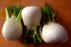 Fenchel Gratin und Kartoffelstampf (7)