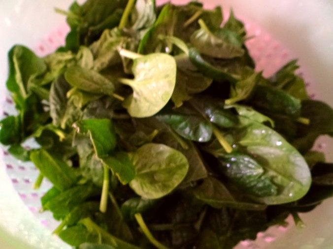 Gemüsesuppe püriert mit Spinat (1f (6)