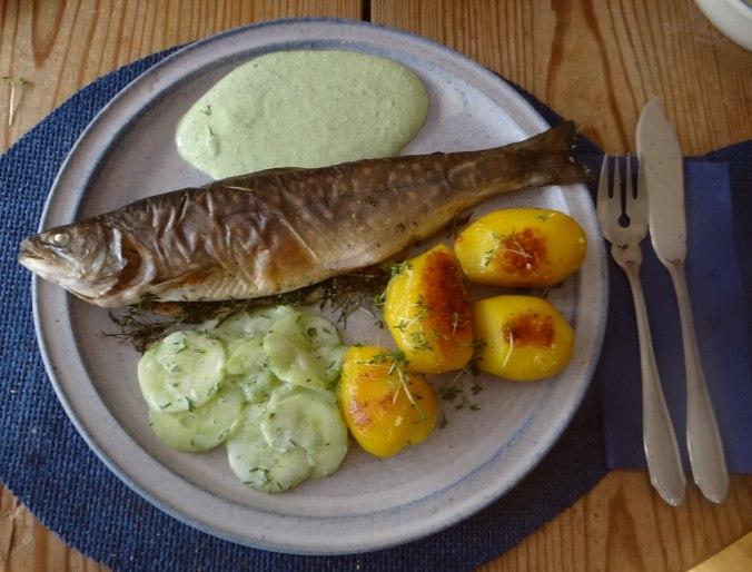 Saibling,Dillsoße,Kartoffeln,Gurkensalat (2)