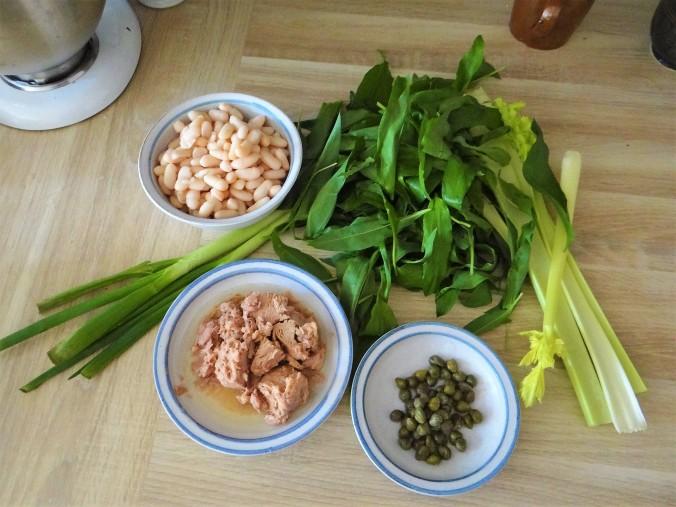 Bohnen,Thunfisch,Bärlauch (5)