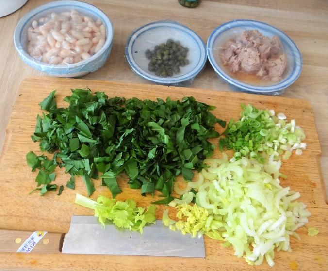 Bohnen,Thunfisch,Bärlauch (8)