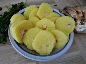 Kloßscheiben,Austernpilze,Möhrensalat (7)