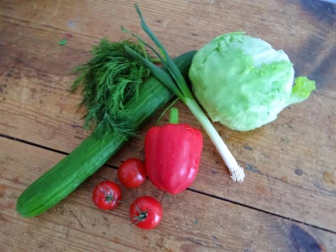 Spargel Omlett,gemischter Salat (4)