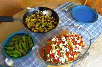 Zucchini Pfanne,Rohgebratene Kartoffeln,Pimientos,Obstsalat (19)